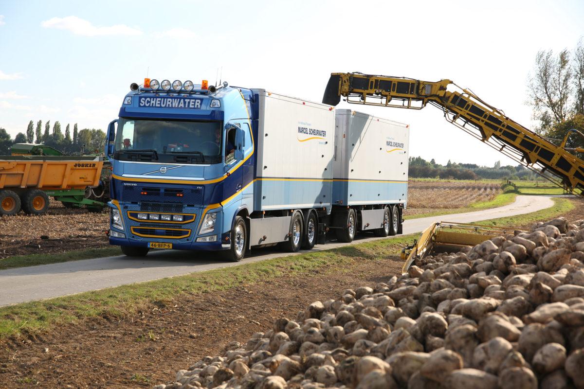Suikerbieten laden | Marcel Scheurwater Transport | Ophemert